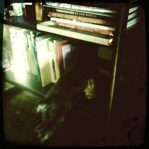 AMG Bookshelf