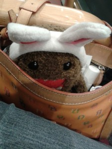 Domo-kun reporting from WITHIN the courthouse...